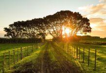 tujuan konversi hak hak atas tanah